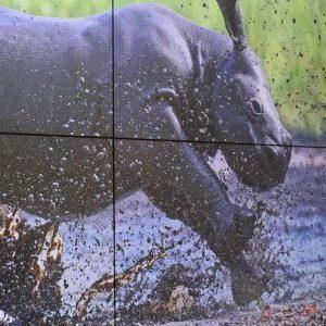 WKBH Rhino Videowall 1 1140×300